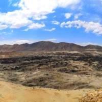 Tour a Playa Punta Ballenas y Caleta de Algueros