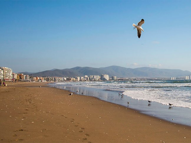 LA SERENA Y COQUIMBO PLAYAS - TREKANWE CHILE TOURS COQUIMBO - ATACAMA