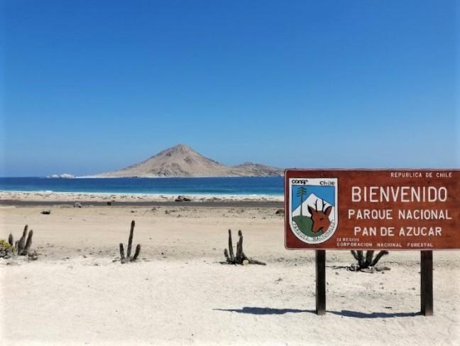 PARQUE NACIONAL PAN DE AZÚCAR - ATACAMA - TREKANWE CHILE